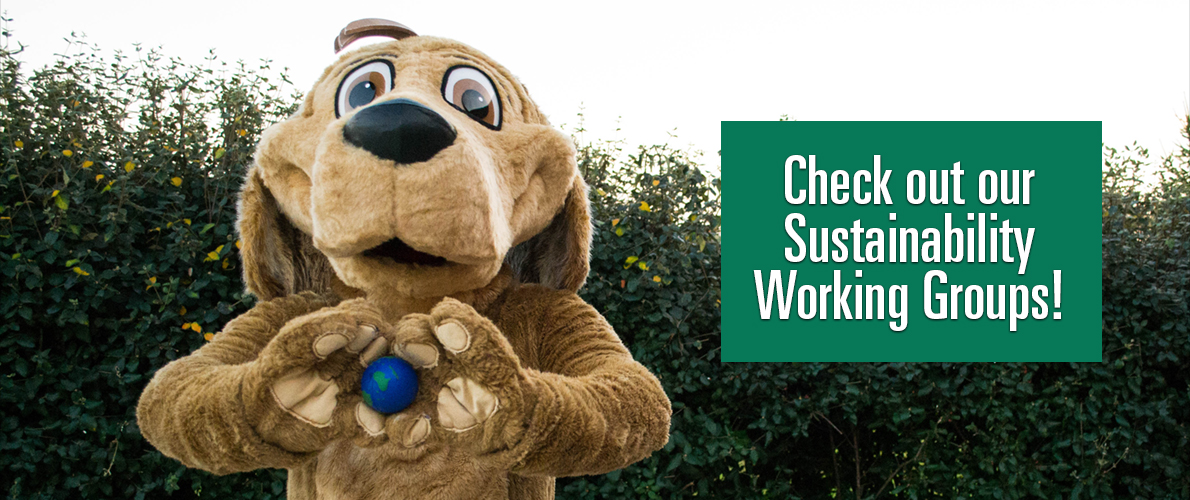 Check out our Sustainability Working Groups!