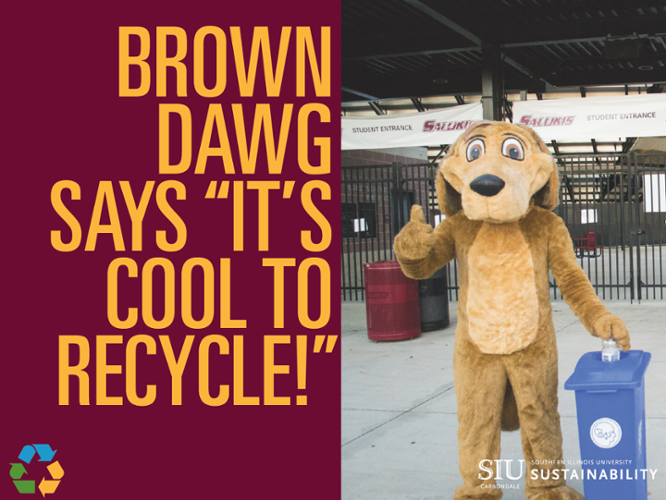 brown dawg says recycle